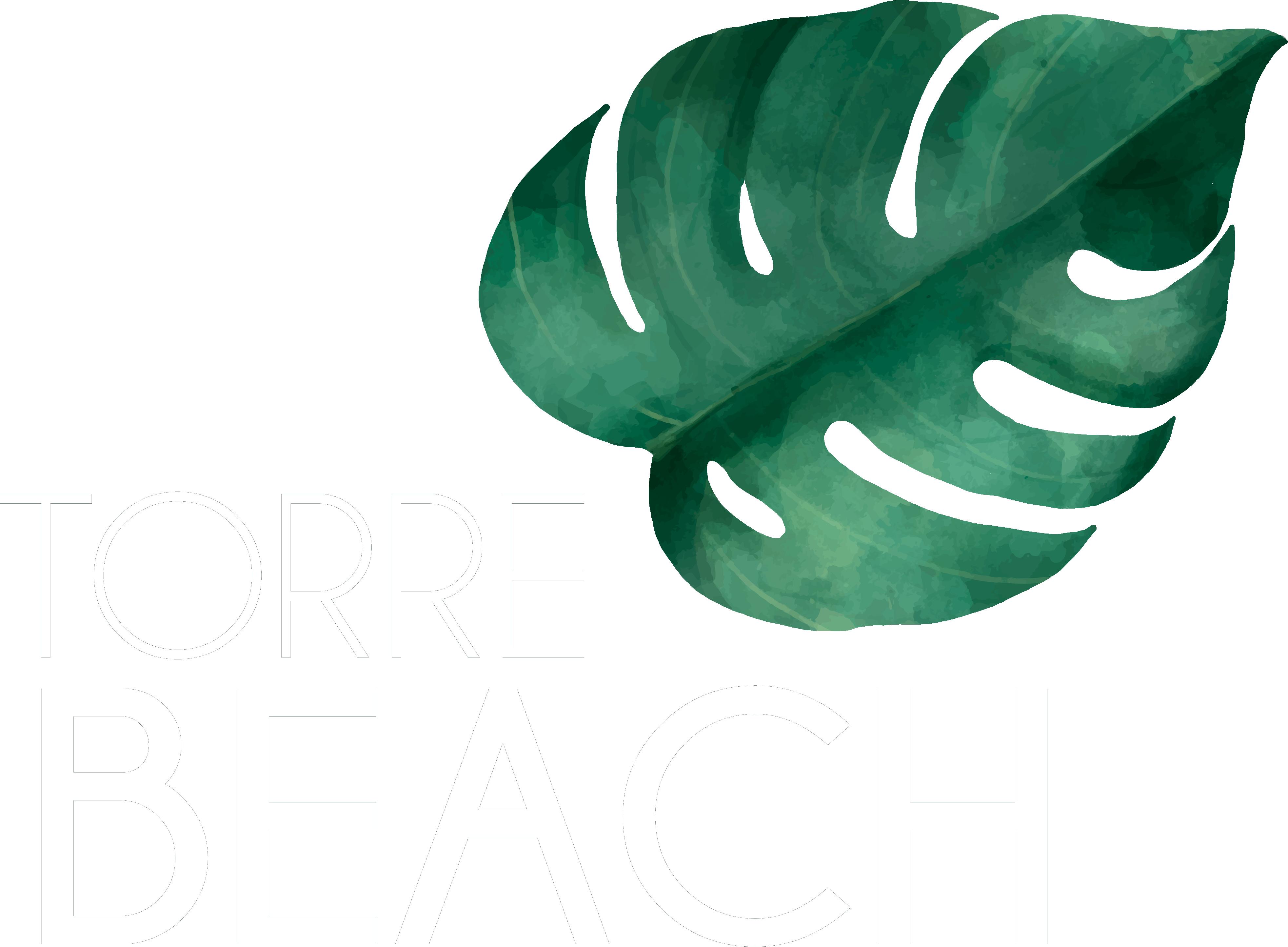 Torrebeach